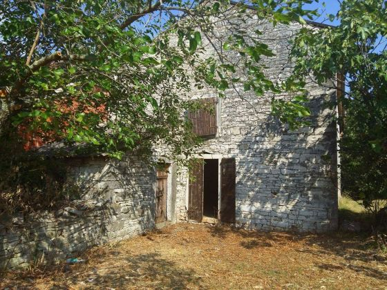 Stone property for renovation in Buje