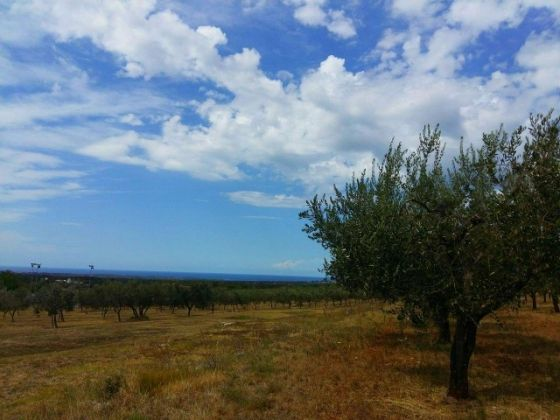 Building plot for sale 9 km from Porec